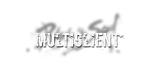 Multibox (EU/NA)-bns_multi_0-png